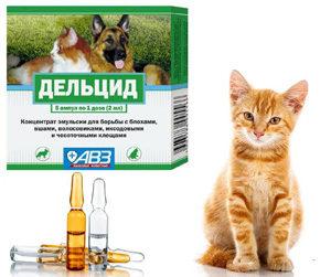 Дельцид для кошек