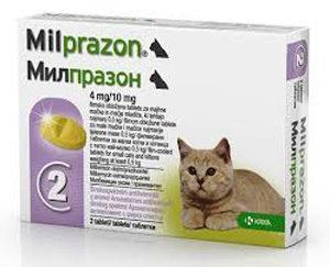 Милпразон для кошек