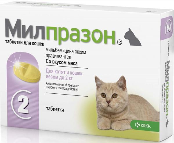 Инструкция по применению милпразона для кошек